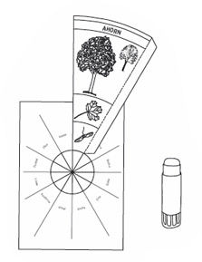 Baumkreis - Anleitung