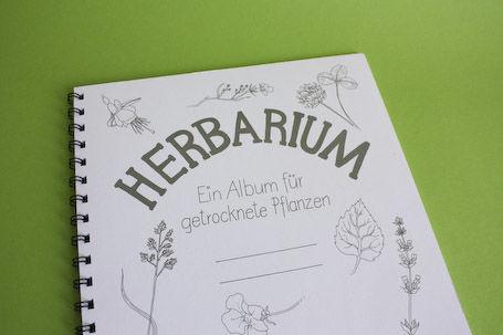 Herbarium - Ein Album fuer getrocknete Pflanzen