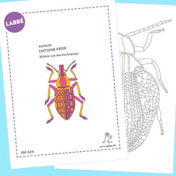 """Beispielseiten aus der """"Ausmalen – Exotische Käfer PDF"""""""