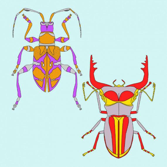 Exotische Käfer zum Ausmalen