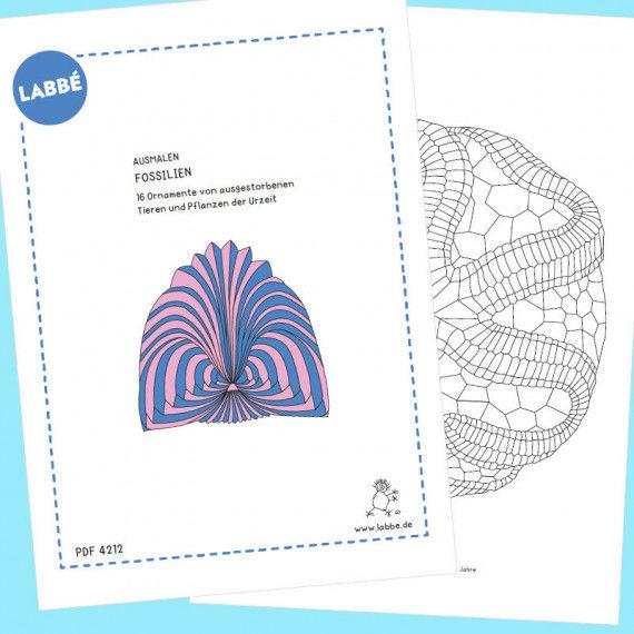 """Beispielseiten aus der """"Ausmalen – Fossilien PDF"""""""