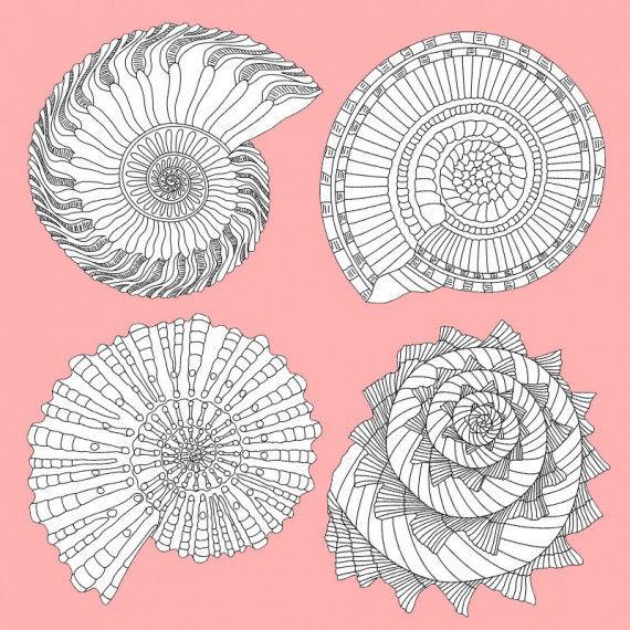 Perfekt geformte Spiralen-Ornamente zum Ausmalen