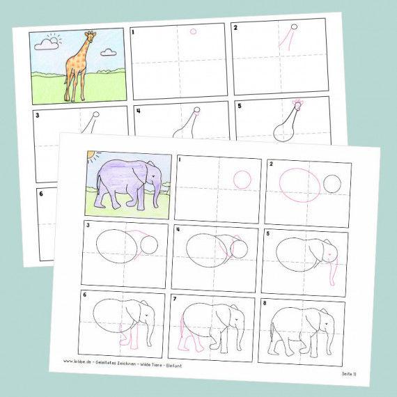 geleitetes zeichnen  wilde tiere pdf  für mädchen
