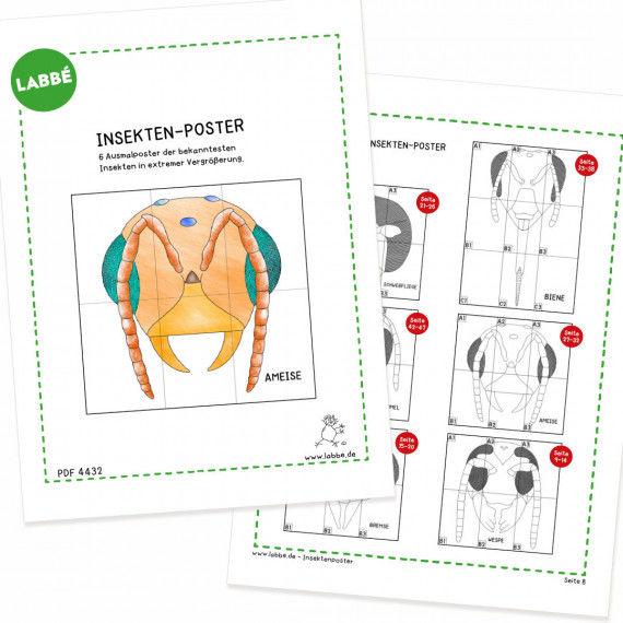 insektenposter pdf  basteln  gestalten  pdfshop  labbé