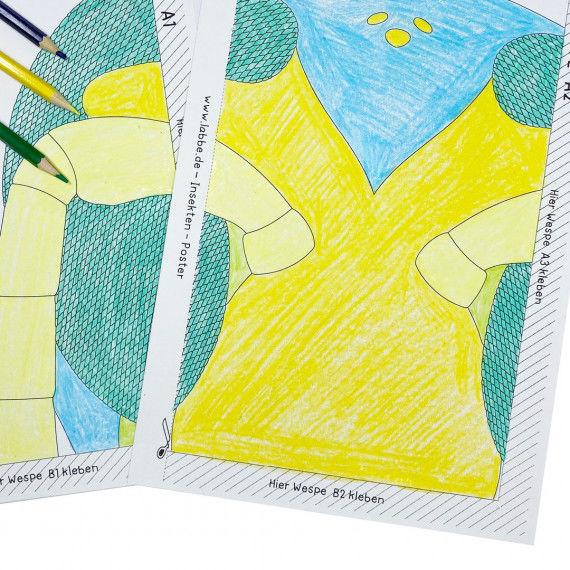 insekten-poster pdf - kindergarten & kita - nach alter