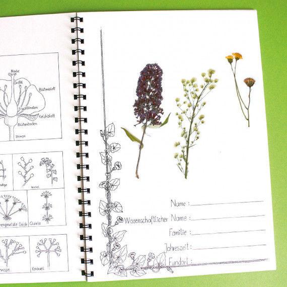 herbarium labb. Black Bedroom Furniture Sets. Home Design Ideas