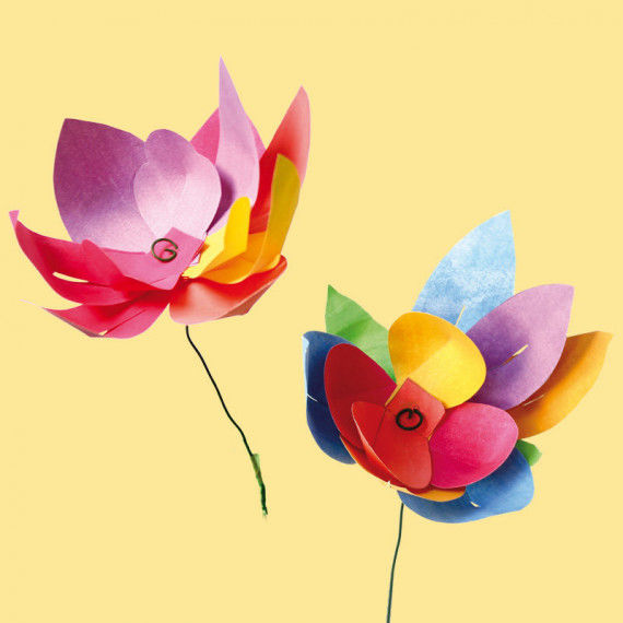 Bunte Blumen zum Muttertag, zum Geburtstag, zum Mitbringen und für die Fensterbank.