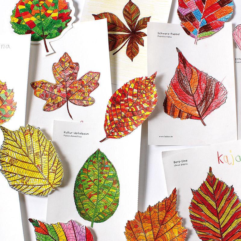 Blätterwald-Tapete - Vorlagen mit Blätterformen