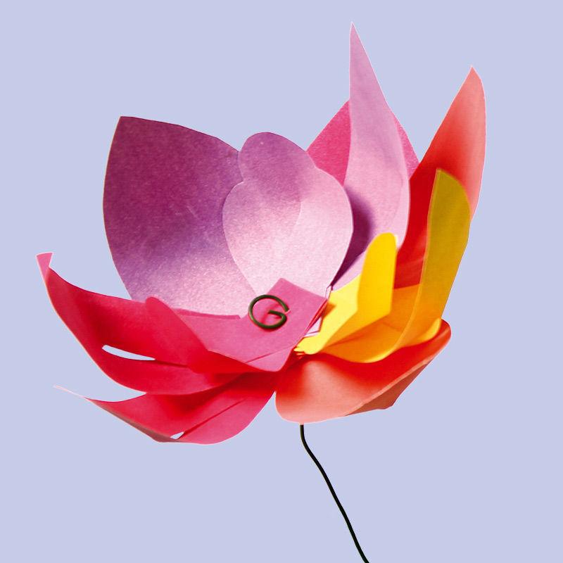 Blumen aus Blütenblättern in 5 verschiedenen Formen