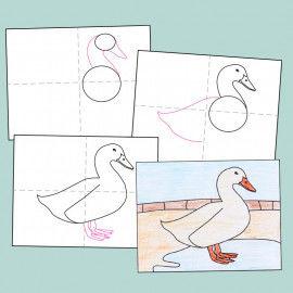 Geleitetes Zeichnen - Ente zeichnen Schritt für Schritt