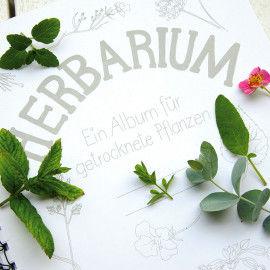 Herbarium - Album zum Sammeln von Pflanzen