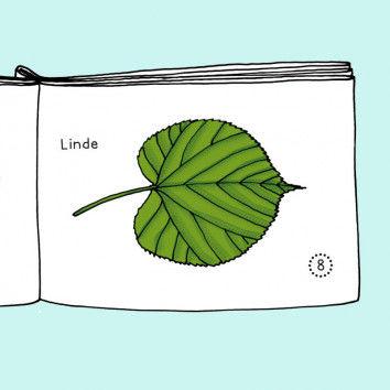 Mini-Buch Pflanzen mit Blättern zum Ausmalen