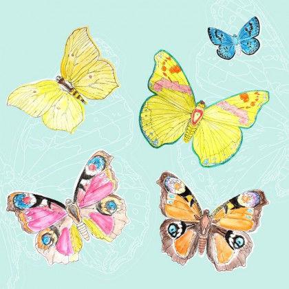 Schmetterlinge Bastelvorlagen Pdf Labbe