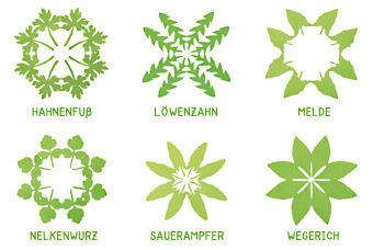Rundfaltschnitt Wildpflanzen